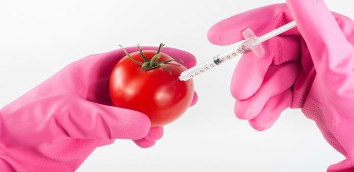 A tomato being injected via syringe